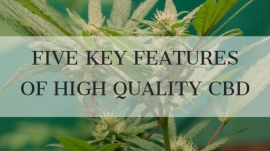 Five Key Features of High Quality CBD