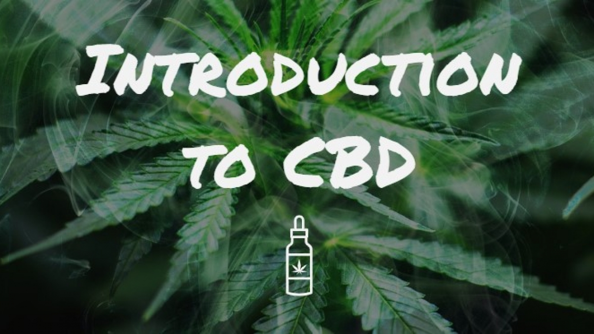 Introduction to CBD Blog