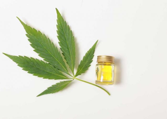 CBD Oil Hemp Leaf